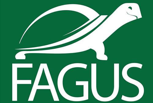 Fagus mobile